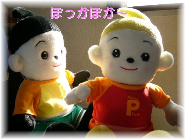 2-P1010012.jpg